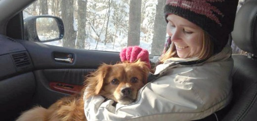Cassandra Torkelson of The Retrievers holds Butter/Benji after catching him Jan. 16 near Grant Valley Road. The dog had lived near an abandoned farm there for four years, slipping the grasp of rescuers.