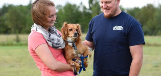 Ashley and Alex Wilard recently adopted Butter from Great River Rescue in Bemidji. (Jillian Gandsey | Bemidji Pioneer)